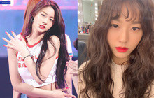Ngàn lẻ một năm Seolhyun (AOA) mới để mái, các fan lại được dịp đứng ngồi không yên