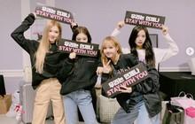 Fan dậy sóng trước thông tin người trong ngành tố concert Black Pink được lấp đầy nhờ vé mời nhà tài trợ