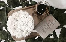 Hoa hồng vĩnh cửu – Món quà đặc biệt cho ngày Nhà giáo Việt Nam 20/11