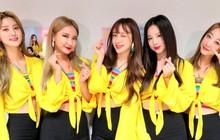 """""""Thánh nữ"""" fancam cùng 2 idol group Kpop giọng đỉnh sắp đến Việt Nam: Sao lại hot đến thế tại Hàn?"""