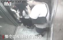 Khó hiểu cực độ: Người đàn ông nói dối bắt giúp nhện trên đầu để liếm tóc cô gái trẻ trong thang máy