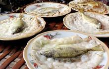 Thưởng thức bao nhiêu đặc sản xứ Huế, chưa chắc bạn biết đến chiếc bánh chễm chệ cả con cá bên trong này