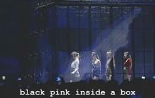 Giữa lúc fan đang ký tên đòi YG đối xử tốt hơn với Black Pink, Jennie đăng ảnh ẩn ý ngầm ủng hộ?