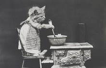 """Đây là ảnh chế """"meme"""" về các boss chó mèo đầu tiên trong lịch sử, xuất hiện cách đây hơn 100 năm"""