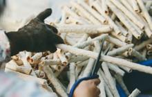 Góc quay về tuổi thơ: bánh gạo ống dân dã miền quê nhưng ai cũng mê và lỡ ăn rồi sẽ bị nghiện ngay