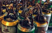 Những trải nghiệm ẩm thực thú vị nên thử một lần vào ngày đông Hà Nội