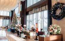 Gift-building: check-in sống ảo tại cây thông khổng lồ cao tới 15m tại Sài Gòn