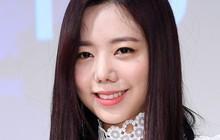 Hậu nghi án phẫu thuật thẩm mỹ hỏng, Namjoo (A Pink) quyết định đi rừng cùng Wanna One