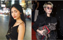 """Tình bạn giữa hai chị em """"hoa dâm bụt"""" Hòa Minzy và Đức Phúc rạn nứt vì một chú chó?"""