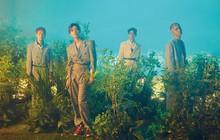 4 thành viên SHINee tung ảnh nhá hàng đầy ảo diệu cho album mới