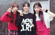 """Lovelyz nhận ý kiến trái chiều khi remake hit một thời của """"mỹ nhân không tuổi"""" Jang Na Ra"""