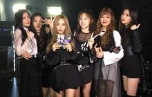 Girlgroup mới nhà Cube vừa debut đã có cúp, hai tiền bối chung nhà nên cảm thấy bẽ mặt là vừa?