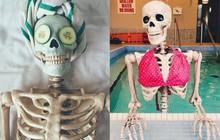 Skellie - Bộ xương nổi tiếng khắp Instagram vì cosplay lại tất cả các kiểu tạo dáng của hội chị em bánh bèo