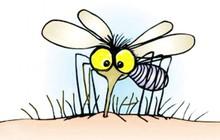 Bạn thường xuyên bị muỗi đốt, những lý do kì lạ sau có thể là thủ phạm