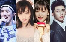 Sao web drama Hoa Ngữ: Người thuận lợi đi lên, kẻ chật vật tìm lại hào quang thuở đầu (Phần 2)