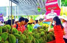 Suối Tiên chào hè rực rỡ với Lễ hội trái cây Nam Bộ 2018