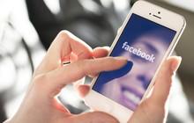 Scandal gần đây của Facebook càng xoáy thêm vào nỗi đau của Zuckerberg: Họ không sở hữu một chiếc smartphone nào cả