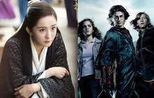 """Vừa lên sóng, """"Phù Dao"""" của Dương Mịch đã bị tố đạo nhái """"Harry Potter"""""""