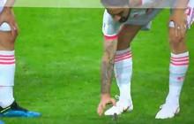 Trai đẹp Isco giải cứu chú chim nhỏ giữa trận đấu của Tây Ban Nha ở World Cup