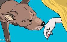 Phát hiện 1 khả năng đặc biệt của loài chó - thoáng qua cũng biết ai là người xấu, người tốt