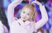 """Thành viên WJSN được chọn làm center của nhóm nhạc chiến thắng """"Produce 101 Trung Quốc"""""""