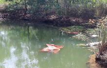 Ra ao cá vớt ốc, hai mẹ con đuối nước thương tâm