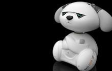 Một bộ phận không nhỏ giới trẻ Châu Á mua robot để tâm sự cho bớt cô đơn