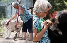 Về hưu rảnh rỗi, cụ bà 62 tuổi nhận nuôi 2 con gấu và 1 con hổ cho vui cửa vui nhà