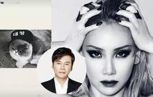 """""""Tốt không sang sông, trách ông đánh cờ"""", có phải CL đăng Instagram story nhằm vào CEO Yang Hyunsuk của YG?"""