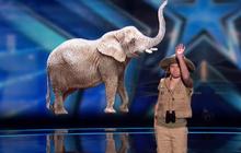 Got Talent: Màn giả tiếng động vật của cô bé 11 tuổi khiến trường quay cười nghiêng ngả