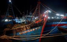 Hàng trăm tàu thuyền được neo đậu tránh bão tại Tĩnh Gia, Thanh Hoá