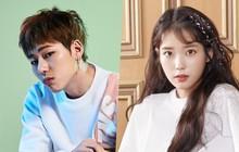 """Sau iKON đến lượt Zico và IU ấn định ngày comeback, Kpop tháng 8 chuẩn bị """"đón bão"""""""
