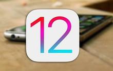 """12 tính năng """"nhỏ nhưng có võ"""" mà bạn không nên bỏ lỡ khi iOS 12 chính thức ra mắt vào cuối năm nay"""