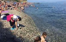 Bất chấp biển cấm, khách Trung Quốc lũ lượt nhặt sỏi quý tại bãi biển Nga