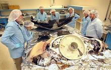 4 sai lầm này nhỏ xíu nhưng đã khiến NASA gặp thảm họa, thiệt hại cả tỷ đô