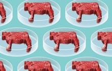 Câu chuyện từ thịt nhân tạo: Liệu sinh học tổng hợp có thay đổi được tương lai của thực phẩm?