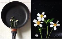 Góc đam mê: Đang chuẩn bị nấu cơm thì cô gái chợt phát hiện mình có năng khiếu làm nhiếp ảnh gia