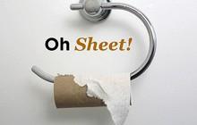 Người Mỹ bình chọn loại giấy vệ sinh đỉnh nhất và loại chiến thắng lại làm từ... kim loại, chạy bằng nước