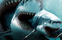"""Xem cá mập khổng lồ """"The Meg"""" ai cũng rùng mình xanh mặt với chi tiết kinh hãi này"""