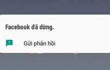 Nhiều người dùng Việt Nam phản ánh Facebook trên Android bị lỗi, liên tục văng ra ngoài