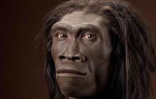 Cả một chủng người cổ đã diệt vong chỉ vì... lười biếng