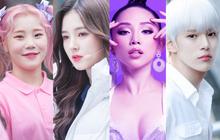 Lộ dàn line up toàn cái tên gây bão của show Hàn-Việt sắp tới: Momoland sẽ đến cùng nhóm nhạc Kpop nào?
