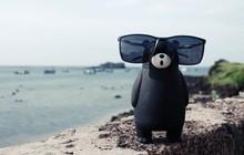 Here We Gau: Cùng Gấu khám phá đảo Phú Quý tuyệt đẹp và hoang sơ