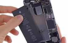 5 lời khuyên sai bét về cách chống chai pin iPhone, tưởng hữu ích nhưng lại không hiệu quả chút nào