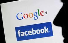 Hé lộ danh tính người được Google trả gần 17 tỷ đồng ở Quảng Nam