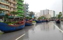 """Tàu thuyền """"lên bờ"""", xếp hàng ngay ngắn trên đường phố để tránh bão đổ bộ"""