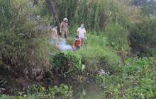 Cần thủ vứt cần câu bỏ chạy khi thấy thi thể nam giới nổi trên con rạch không tên ở Sài Gòn