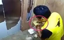 Trung Quốc: Đi giao đồ ăn nhanh, Shipper ăn vụng luôn thức ăn của khách