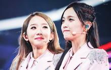 """Toàn cảnh vụ lùm xùm """"đi để trở về"""" của 2 cô gái dẫn đầu nhóm nữ chiến thắng """"Produce 101 Trung Quốc"""""""