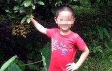 Phép màu đã không mỉm cười với cậu bé 7 tuổi bị nhiễm trùng máu, suy đa tạng ở Hà Nội